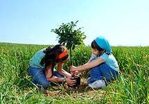Développer l'intelligence écologique dans l'entreprise