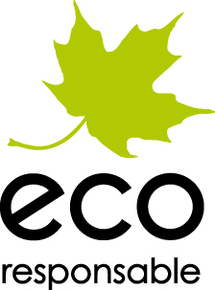 Comment engager vos équipes dans une démarche éco-responsable?