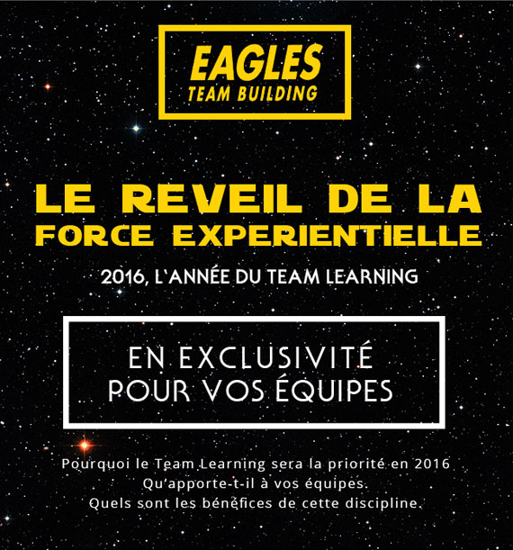 Le réveil du Team Learning