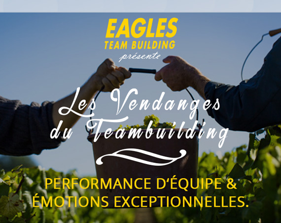 Les vendanges du Team Building